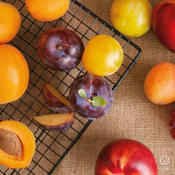 """Tutti Frutti 🍑 Un mix della nostra frutta di stagione più buona in un unico acquisto: scegli """"Tutti Frutti"""" nella sezione """"Kit e Preparati""""! Ti portiamo a casa una scorta sana e perfetta per prepararti una macedonia di pesche, susine e albicocche! ° ° ° #floema #bolognafood #ferrarafood #reggioemiliafood #modenafood #imolafood #consegnaadomicilio #consegnagratuita #mangiaresano #verduradistagione #fruttadistagione #fruttafresca #sano #freschezza #verdurafresca #agricoltura #deliveryfood #eatwell #slowfood #igersemiliaromagna #volgoemiliaromagna #vivobologna #emiliaromagna #food #instafood #instagood #healthyfood #italiaintavola"""